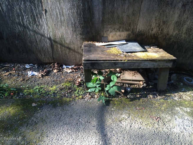 photography-old bench-uninviting-SwittersB