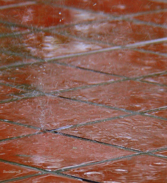 photography-rain drops-tile floor-dancing-SwittersB