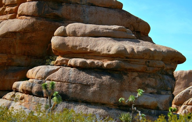 Photography-Rock formation-Joshua Tree-Desert-SwittersB