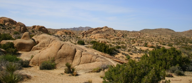 photography-rock formations-desert-Joshua Tree- SwittersB