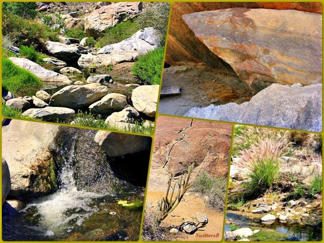 photography-SwittersB-tahquitz canyon-desert