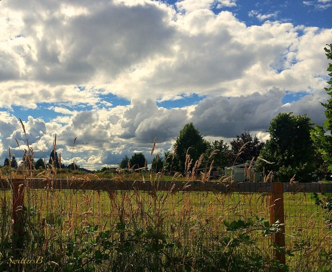 clouds-fenceline-photography-nature-SwittersB