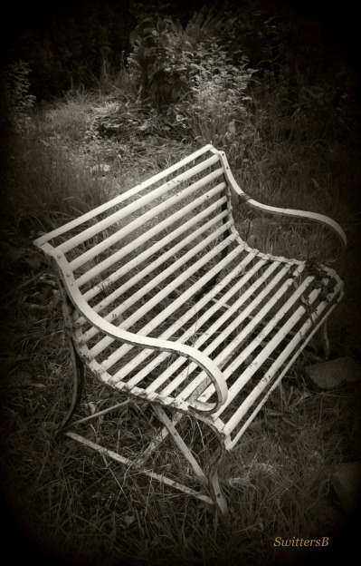 photography-old bench-tall grass-SwittersB-sepia
