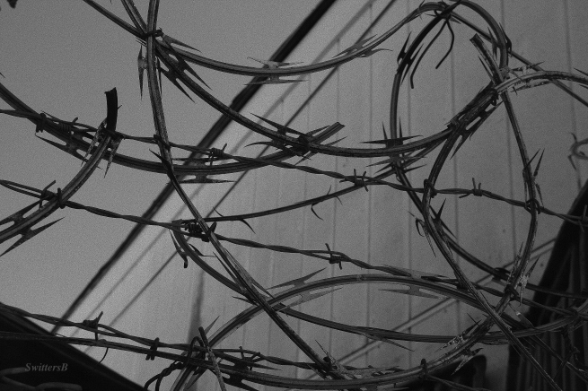 razor wire-barbed wire-photography-SwittersB