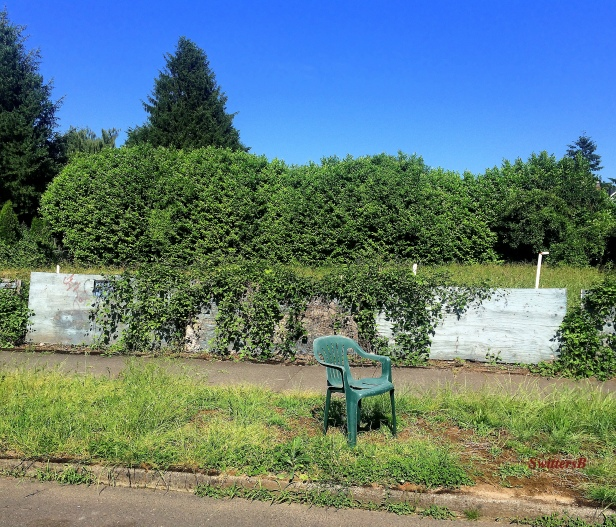rest stop-photography-chair-curbing-Portland-SwittersB