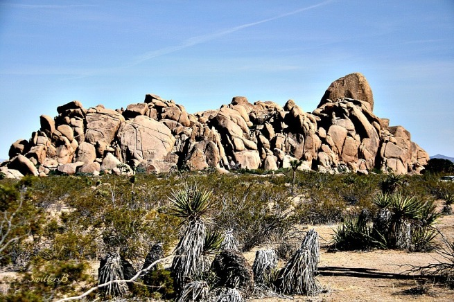 rock formations-Joshua Tree-Mojave-travel-photography-SwittersB