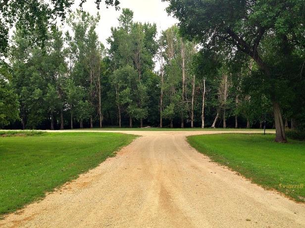 rural road-quiet-dirt road-farming-SwittersB