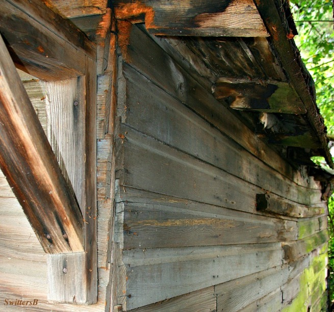 rustic-photography-tongue and groove-sagging-construction-renovation-lumber-SwittersB