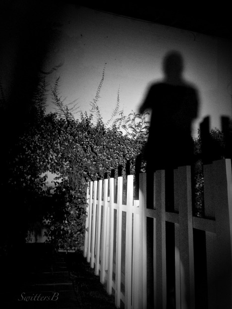 shadows-light-night-photography-SwittersB