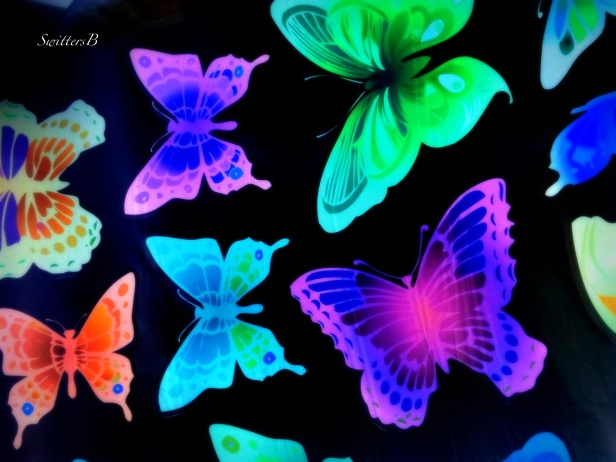butterfly-decals-life-happy-SwittersB-photography