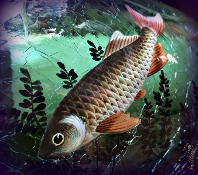 fish--vase-art-asian-photography-SwittersB