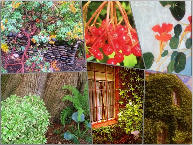 garden-photography-edgefield-SwittersB