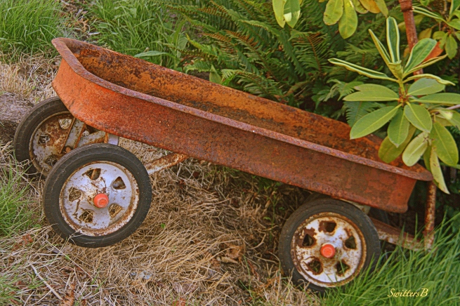 wagon-radio flyer-rust-photography-SwittersB
