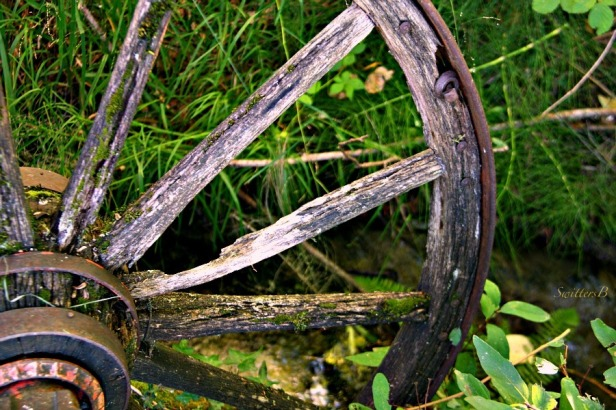 wagon wheel-photograhy-SwittersB-spokes