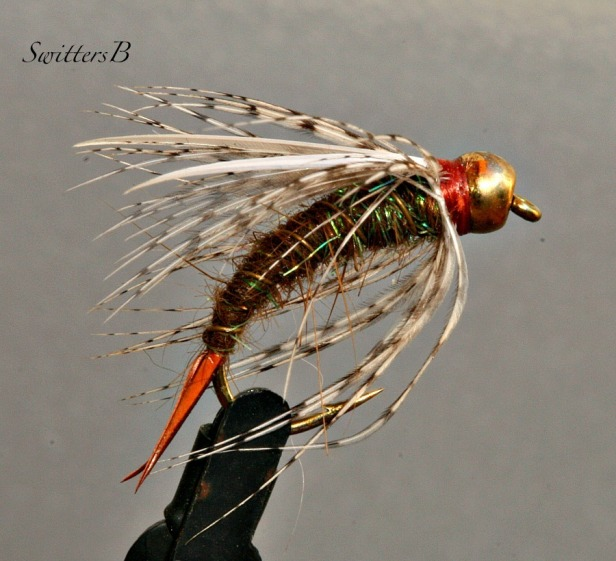 wet fly-bead head-biot wing-dubbing-photography-macro-SwittersB