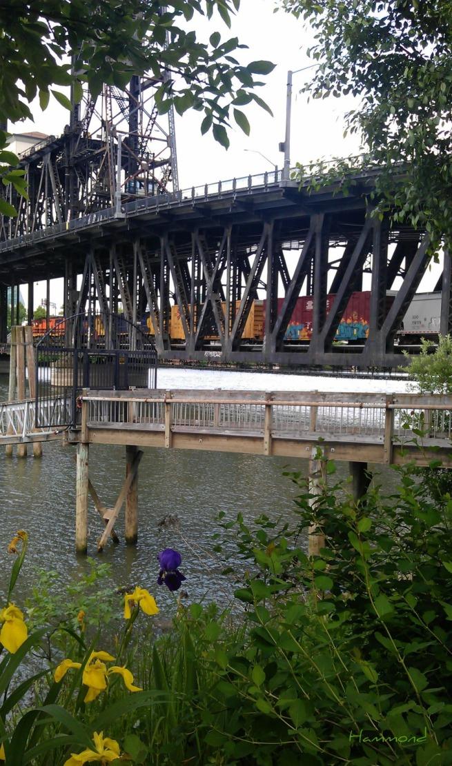 a=bridge -train dock photography Hammond SwittersB flowers