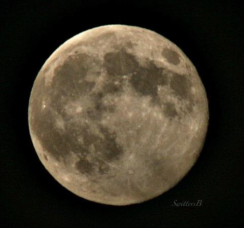 full moon-August 10 14-photography-smokey-SwittesB