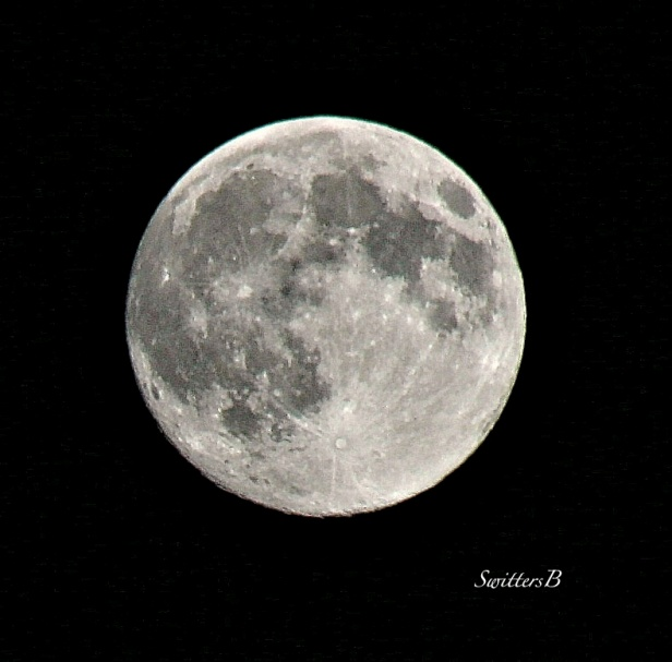 moon-August 9 2014-photography-nature-SwittersB