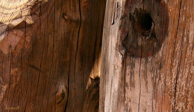 old wood-bolt hole-washer markings-design-grain-photography-SwittersB