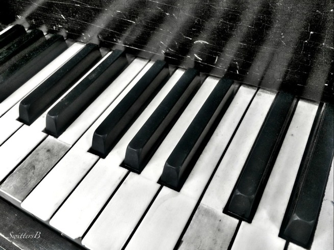 piano-keyboard-keys-photography-SwittersB