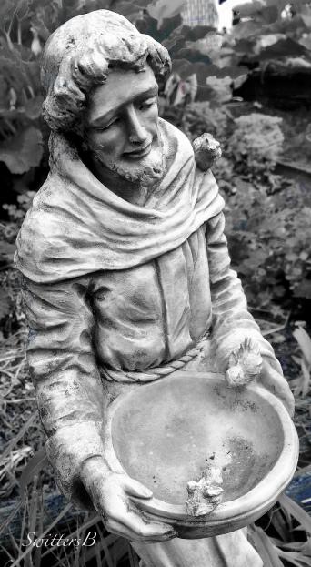 St. Francis-yard art-gardening-photography-SwittersB