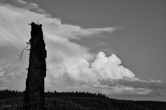 storm clouds-outdoors-mountains-snag-photography-SwittersB