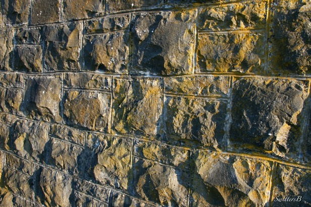 vista house wall-SwittersB-photography-Oregon-Gorge