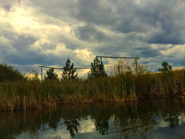 back bay-photography-lake-Oregon-fishing-SwittersB-trout