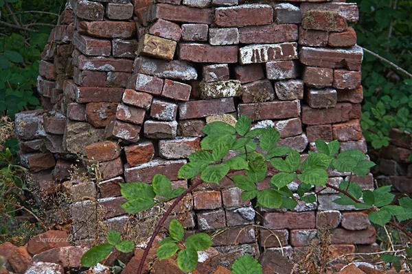 brick stack-old bricks-photography-briar-photography-SwittersB