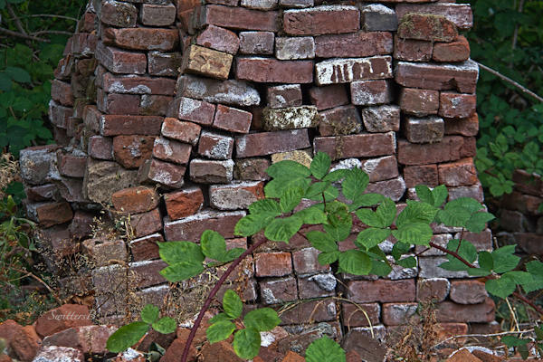 brick stack-old bricks-photography-briar-photography-SwittersB