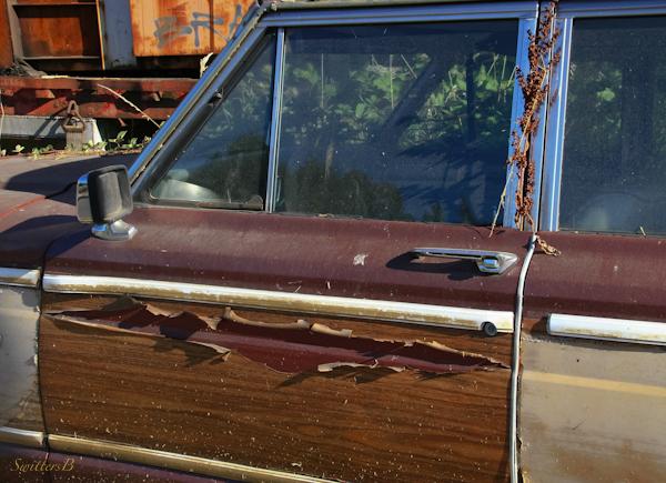 car door-peeling paint-abandoned-photography-SwittersB