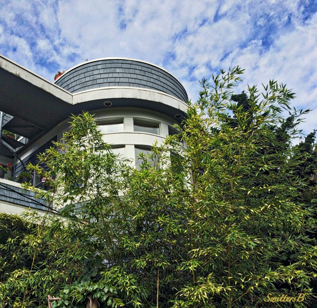 curve appeal-seattle-curved roof-photography-SwittersB