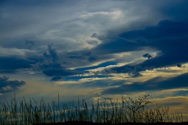 grass bank-dark clouds-nature-photography-SwittersB