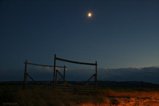 moonlight-gate-swittersb