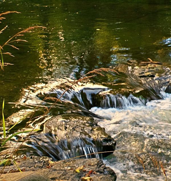 river-rapids-nature-Oregon-coast-SwittersB-photography