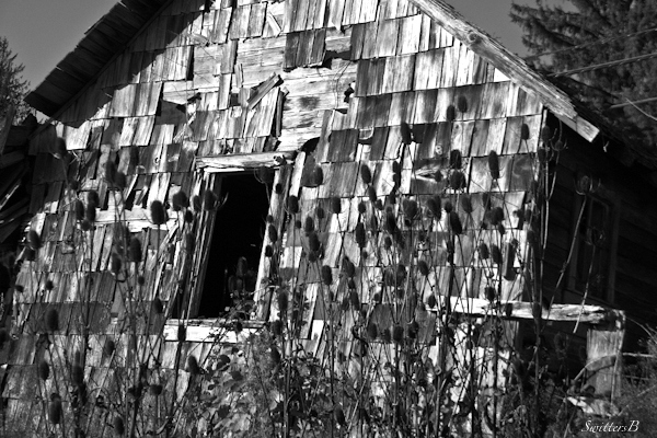 abandoned-forgotten-old house-Oregon-photography-rustic-rural-SwittersB