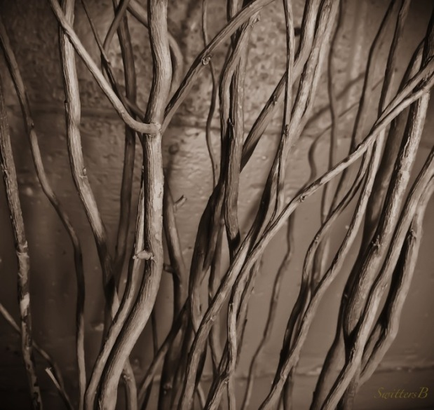 branches-stick figures-art-photography-SwittersB