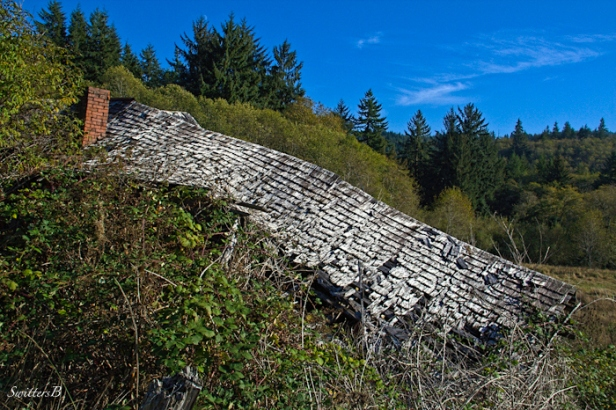 collapse-roof-rural-farm-Oregon-photography-SwittersB