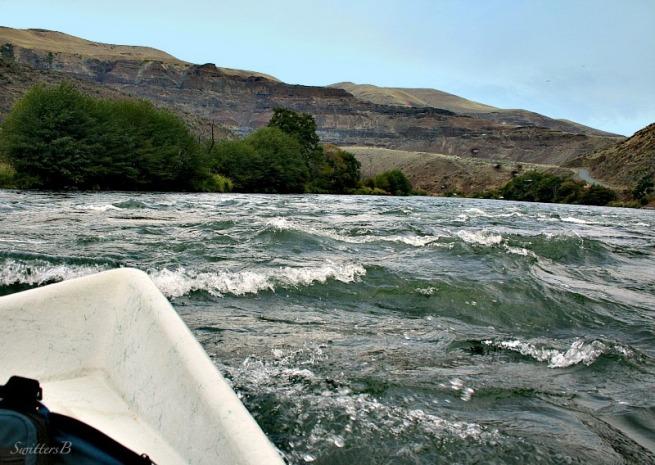 Deschutes River-Oregon-rapids-drift boat-SwittersB