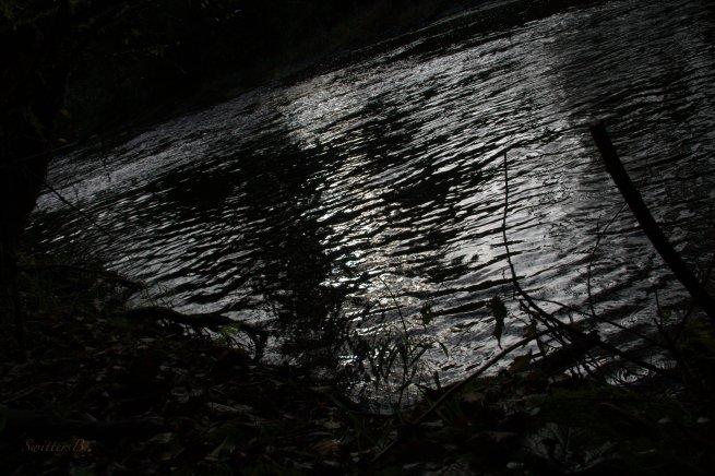 first light-river-fishing-Oregon-SwittersB