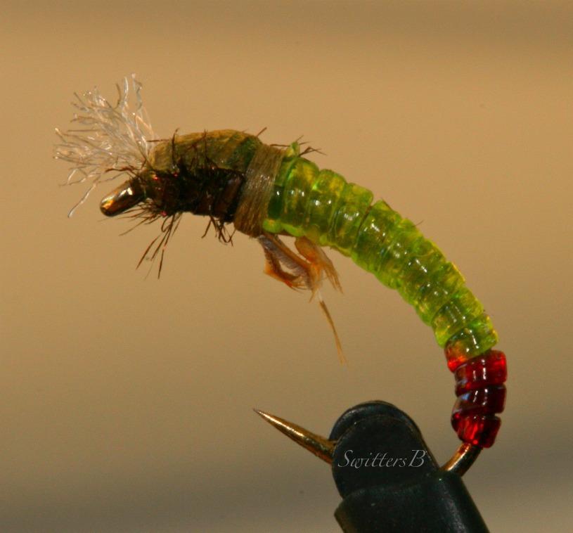 Beginning fly tying swittersb exploring for Fly fishing tying
