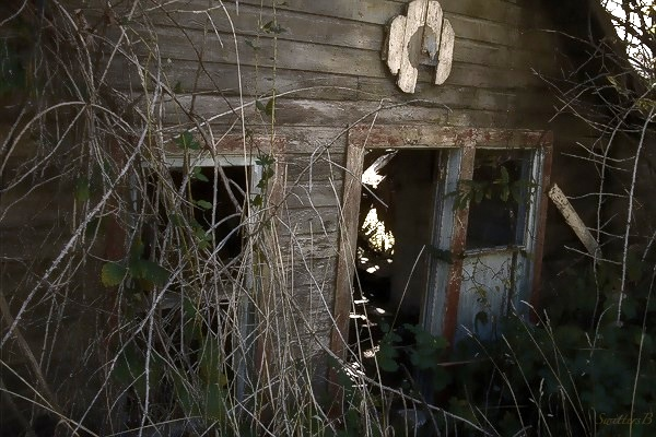 old house-rustic-rural-photography-abandoned-SwittersB