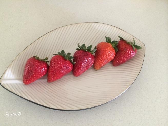 presentation-strawberries-welcoming-SwittersB-photography