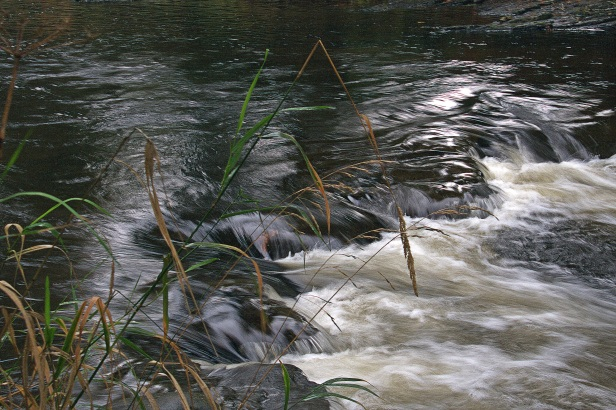 rapids broken topIMG_6021raw