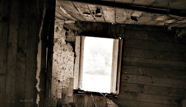 room-view-old-photography-SwittersB-window