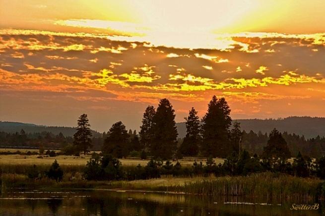 bright light-Oregon-photography-lake-SwittersB
