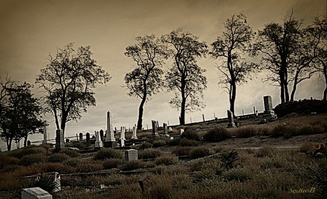 cemetery-pioneer-Oregon-hillside-SwittersB-photography