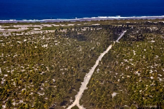 Christmas Island-undeveloped-palm trees-island-Pacific-Kiritmati-SwittersB-Photography-aerial
