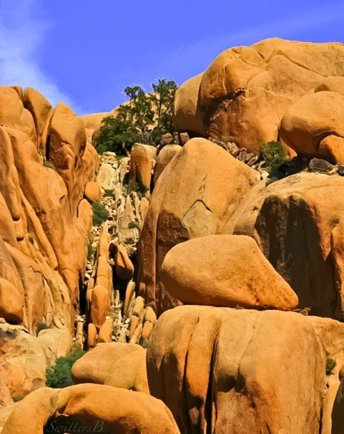 Draw+Joshua Tree Park-Rock Formations-SwittersB-photography