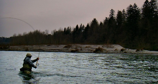 ™ Spey SwittersB-Winter-Two hander-fishing-steelhead-Oregon